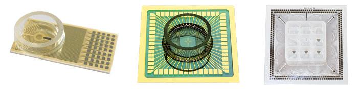 Microelectrode Arrays - MEAs